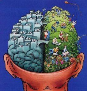 Разберись с мозгами